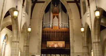 Mulet Organ picture